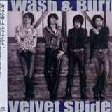 Ask - Velvet Spider