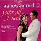 Marvin Gaye - [marvin gaye & tammi terrell] youre all i need