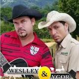 Wesley E Ygor
