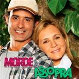 Novelas - Morde & Assopra - Nacional
