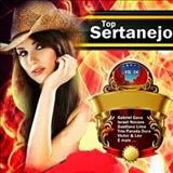 Pista Sertaneja - Top Hits Sertanejo 2014