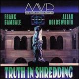 Frank Gambale - Truth In Shredding