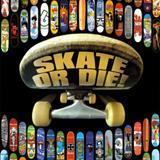 Skate Som De Hip Hop - de skatista para skatista