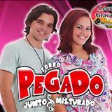 Forró Pegado - forro pegado 03