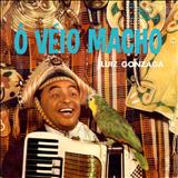 Luiz Gonzaga - Ô Veio Macho