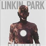 Linkin Park - Burn It Down