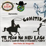 Pista Sertaneja - COMITIVA TE PEGO NO MEU LAÇO