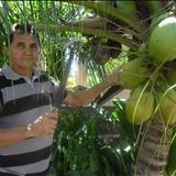 Paulo Nascimento De Iguatu - Paulo Nascimento De Iguatu / Não entendo seu olhar