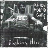 Bloodhound Gang - Dingleberry Haze