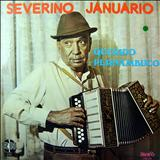 Severino Januário - Querido Pernambuco (RN)