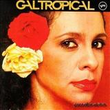 Gal Costa - Gal Tropical