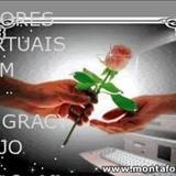 COLETÂNEAS DOS AMORES VIRTUAIS DO SOM 13 - AMOR VIRTUAL CORAÇÃO NACIONAL
