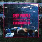 Deep Purple -  In The Absence Of Pink - Knebworth 85 [Live]