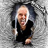 Metallica -  Live At Madison Square Garden, New York, NY 2009