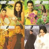 Sandy & Júnior - As Quatro Estações - O Show