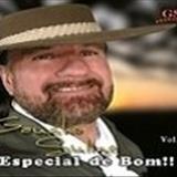 Gaúcho Sulino - GAUCHO SULINO E AMIGOS