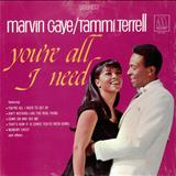 Marvin Gaye - [marvin gaye & tammi terrell] youre all i need