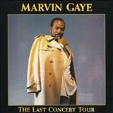 Marvin Gaye - the last concert tour