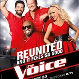 The Voice US - Season 5