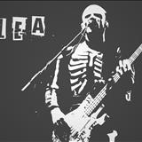 Flea - Participações 1995/2003