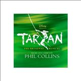 Classicos Musicais - Tarzan - The Musical