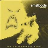 The Chainsmokers - Smallpools - Dreaming (The Chainsmokers Remix)