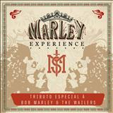 Mato Seco - MATO SECO - MARLEY EXPERIENCE