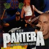 Pantera - The Best Of Pantera Far Beyond The Great Southern Cowboys Vulgar Hits