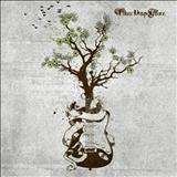 Three Days Grace - Acoustic Wood Insight