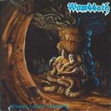 Wombbath - Internal Caustic Torments