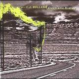 CJ BOlland - Electronic Highway