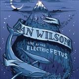 Dan Wilson - Live At Electric Fetus
