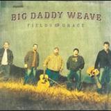 Big Daddy Weave - Fields Of Grace