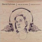 David Sylvian - Died In The Wool