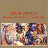 David Sylvian - Alchemy: An Index Of Possibilities [Remastered]