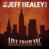 Jeff Healey - Live From Nyc