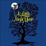 Classicos Musicais - A Little Night Music