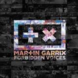 Martin Garrix - Martin Garrix - Forbidden Voices (Original Mix)