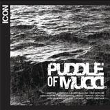 Puddle Of Mudd - Icon