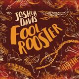 Joshua Davis - Fool Rooster