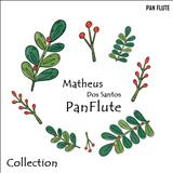 Matheus Dos Santos Panflute - Collection