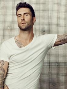 Adam Levine, do Maroon 5, cria série inspirada no incrível clipe de 'Sugar'