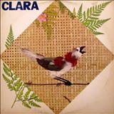 Coroa de areia - Clara