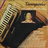 Dominguinhos - A Maravilhosa Música Brasileira