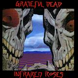 Grateful Dead - Infrared Roses