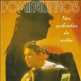Dominguinhos - Nas Quebradas Do Sertão