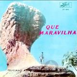 Feliciano Amaral - Que Maravilha!