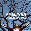 Amelinha - Janela Do Brasil