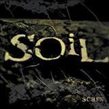 Soil - Scars