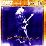 Joe Satriani - The Beautiful Guitar